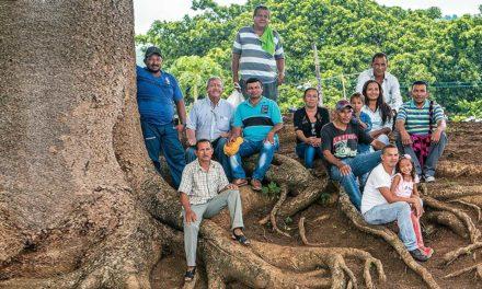 La restitución de tierras abre puertas para la mejora de la vida en el campo