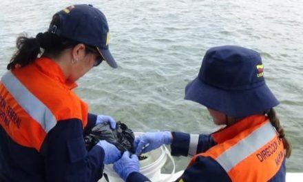 Dimar busca mitigar contaminación por trafico marítimo internacional
