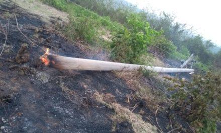 Incendios forestales afectan servicio de energía en El Guamo