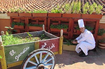Festival de Gastronomía Sostenible en Cartagena