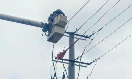 Electricaribe continua trabajos preventivos para mejorar su servicio