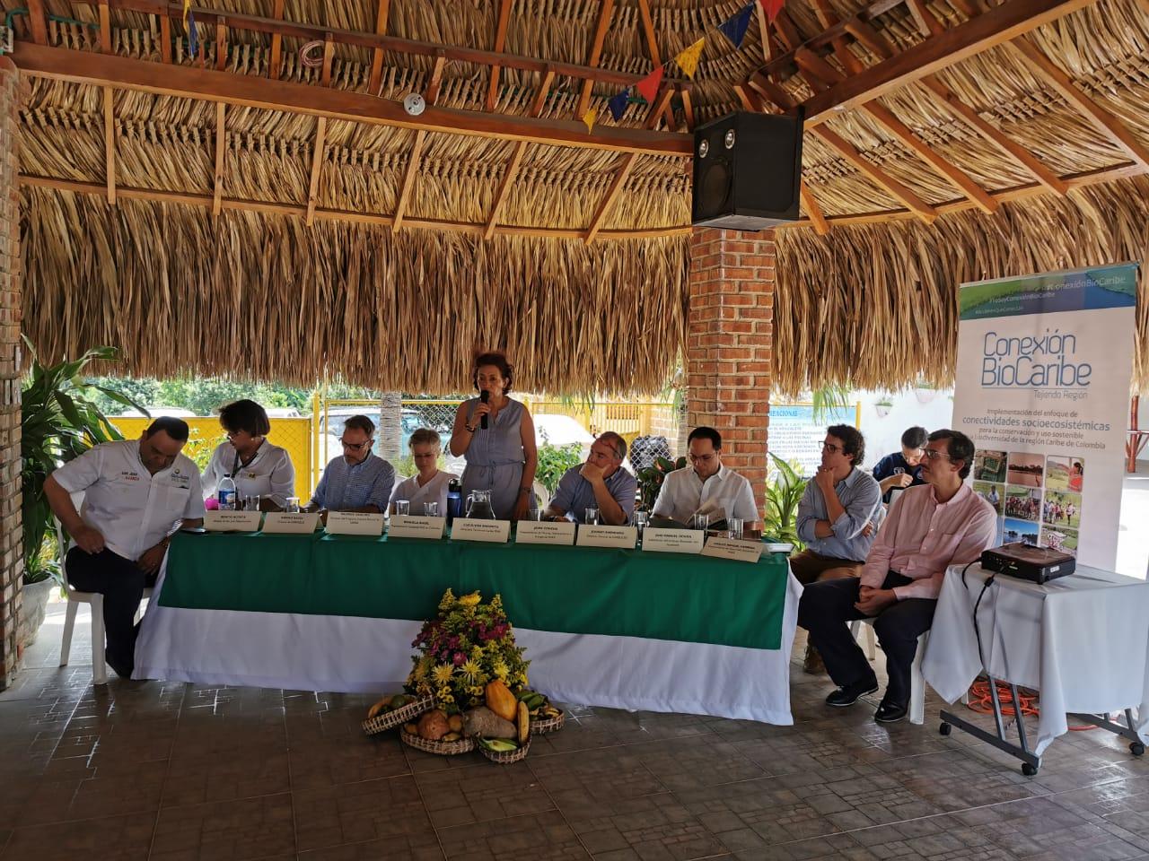 Cardique declara como reservas forestales dos áreas de bosque seco tropical