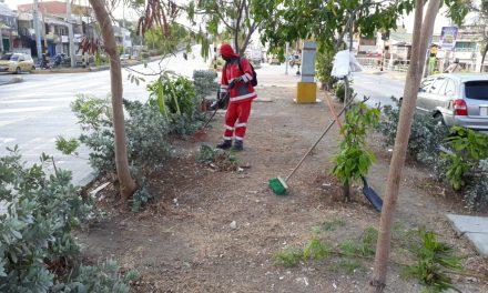 Se adelantan jornadas de limpieza en la ciudad