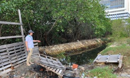 Cardique realizará restablecimiento ambiental de ecosistema en Marbella