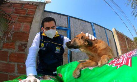 Centros de protección animal reciben ayuda del Gobernador de Bolívar