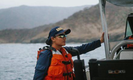 Armada Nacional devuelve a su habitad más de 800 unidades de fauna protegida