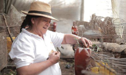 """""""Conexiones de valor"""": alianza entre el SENA y la Consejería para la Equidad de la Mujer"""