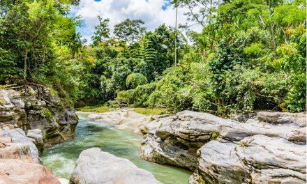Awake Travel: sigue en pie proyecto sobre turismo de naturaleza