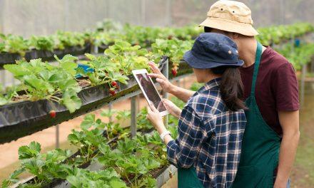 La tecnología como factor fundamental del sector agropecuario en Colombia