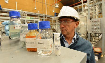 Desarrollan prototipo de biocera para cósmeticos de alta gama