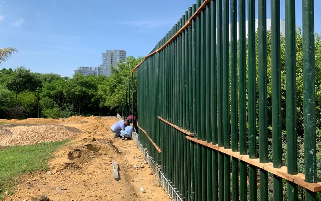 Obras de protección del manglar en el caño de bazurto avanzan satisfactoriamente