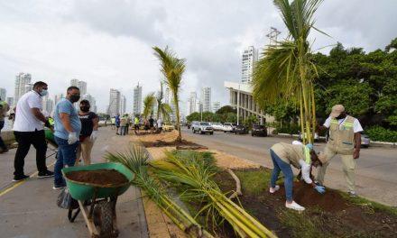 EPA Cartagena implementa acciones para la siembra de 100 mil árboles