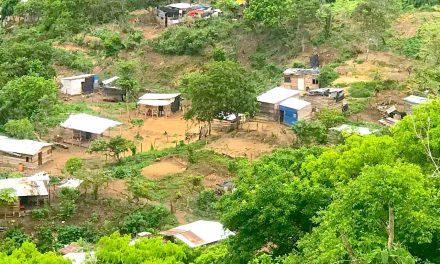 Denuncian tala indiscriminada de árboles y construcciones ilegales en El Pie de la Popa