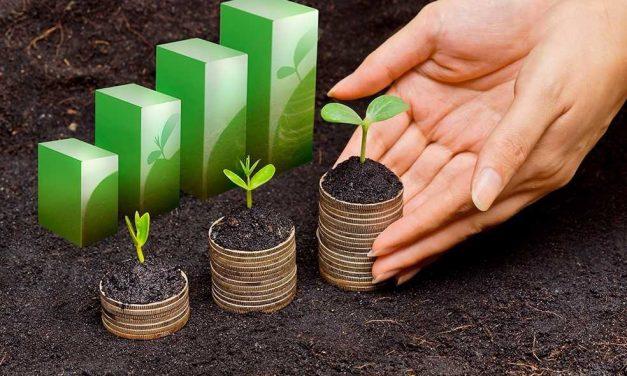 Gran oportunidad para micro y pequeñas empresas en varios sectores económicos