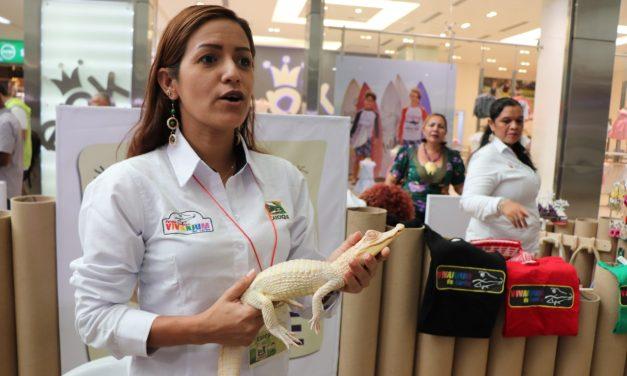 La Región Caribe se prepara para la Feria Virtual de Negocios Verdes