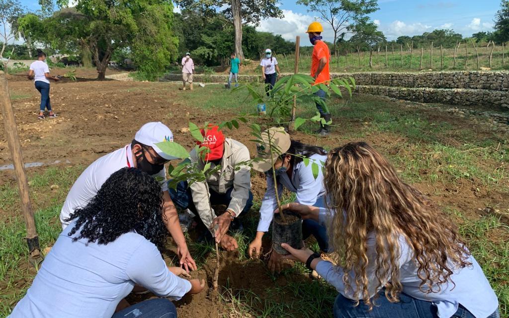 Cardique siembra 500 árboles en Arroyo Grande
