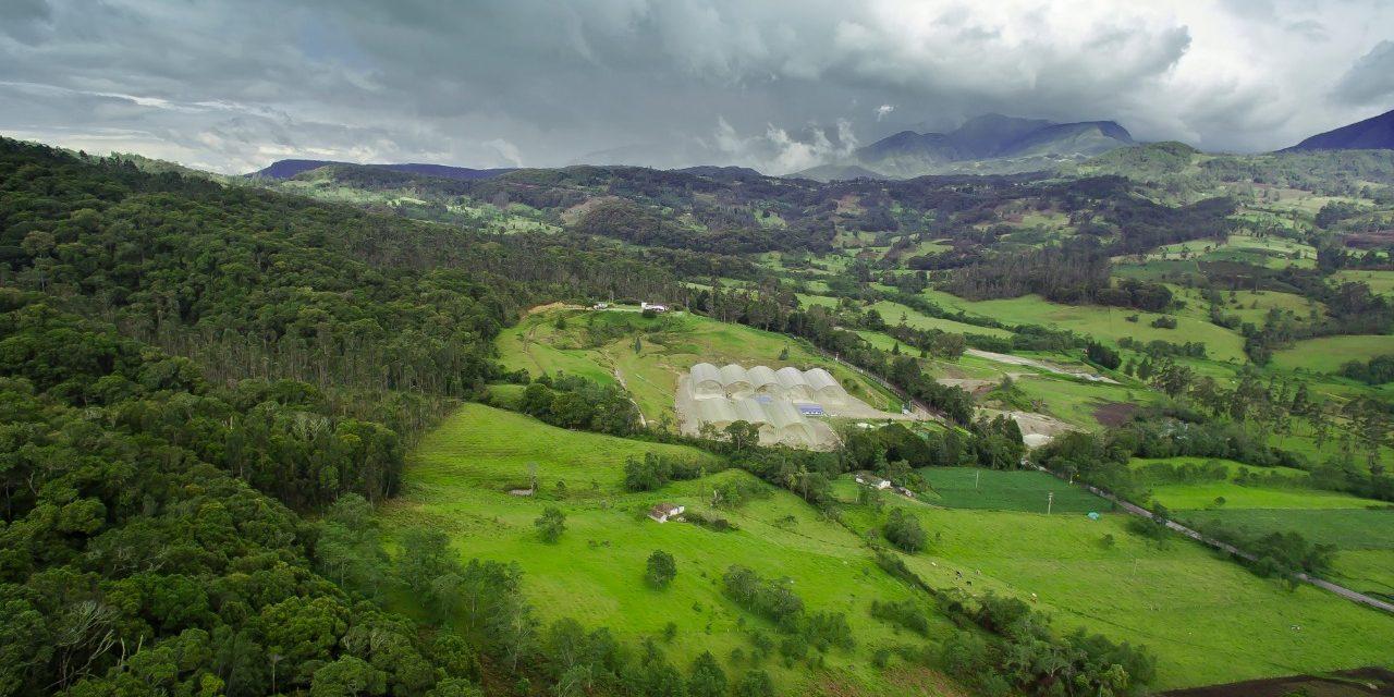 Corona celebra el Día de los Parques Naturales de Colombia