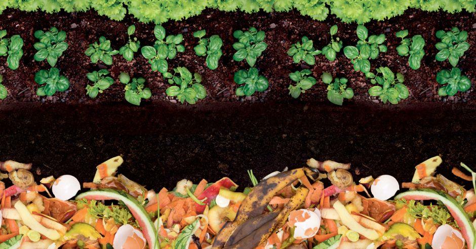 ¿Cuáles son los beneficios del compostaje?
