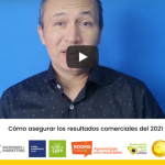 ¿Cómo asegurar los resultados comerciales del 2021?
