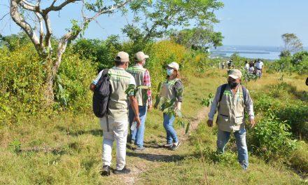 EPA explica a la Procuraduría Ambiental y Agraria proceso de siembra en La Popa