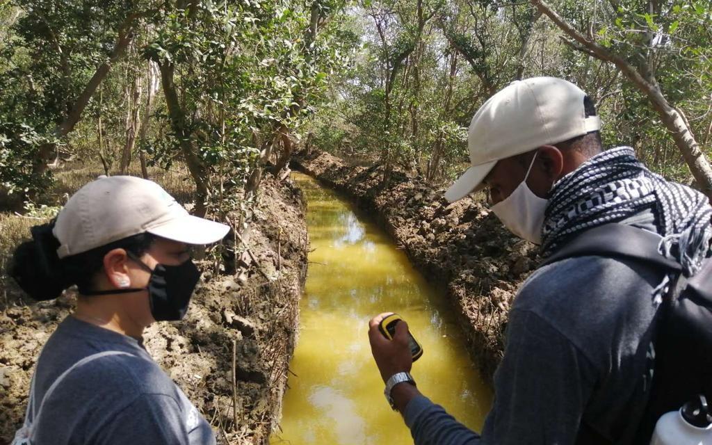 Cardique inicia proceso de restauración ecológica en 59,2 hectáreas de Ciénaga de La Virgen