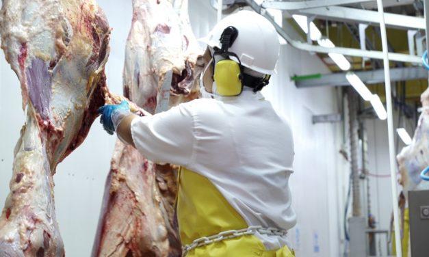 Exportaciones de carne fueron las más altas en los último 4 años