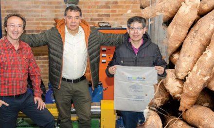 En Colombia crean una bolsa hidrosoluble hecha a partir de almidón de yuca