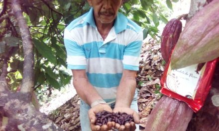 Productos orgánicos de San Jacinto serán comercializados en supermercados de Bolívar y Atlántico