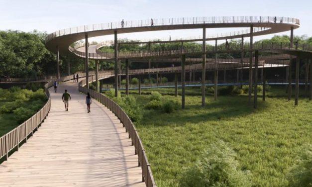 Cuatro oferentes están interesados en liderar el proyecto de recuperación de la Ciénaga de Mallorquín