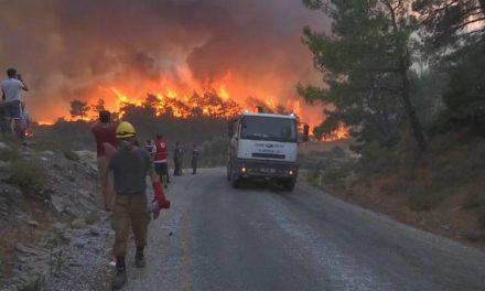 Más de 100 focos activos de incendios forestales en Grecia y Turquía