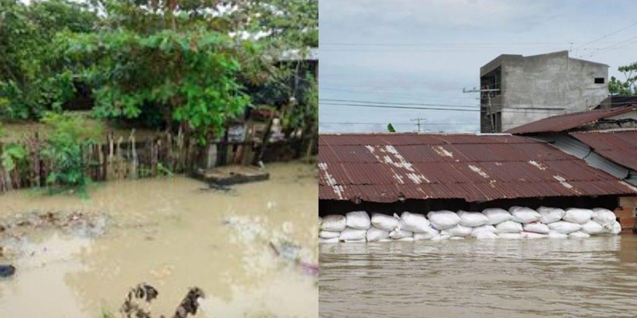 Alarmante situación se sigue presentando en la Mojana por la ola invernal