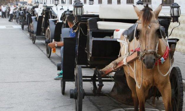MinTransporte emite nueva reglamentación para los cocheros